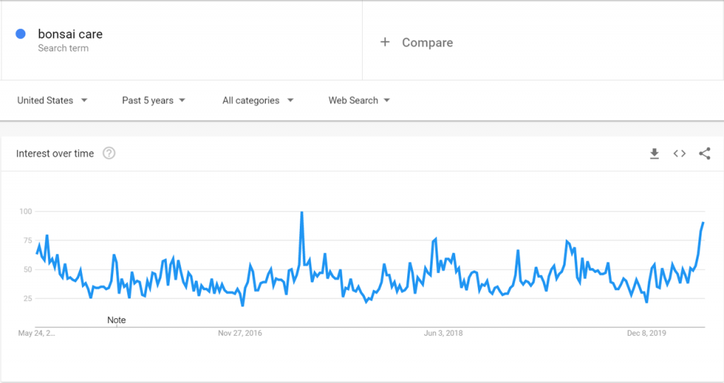 Google Trends data for Bonsai Care