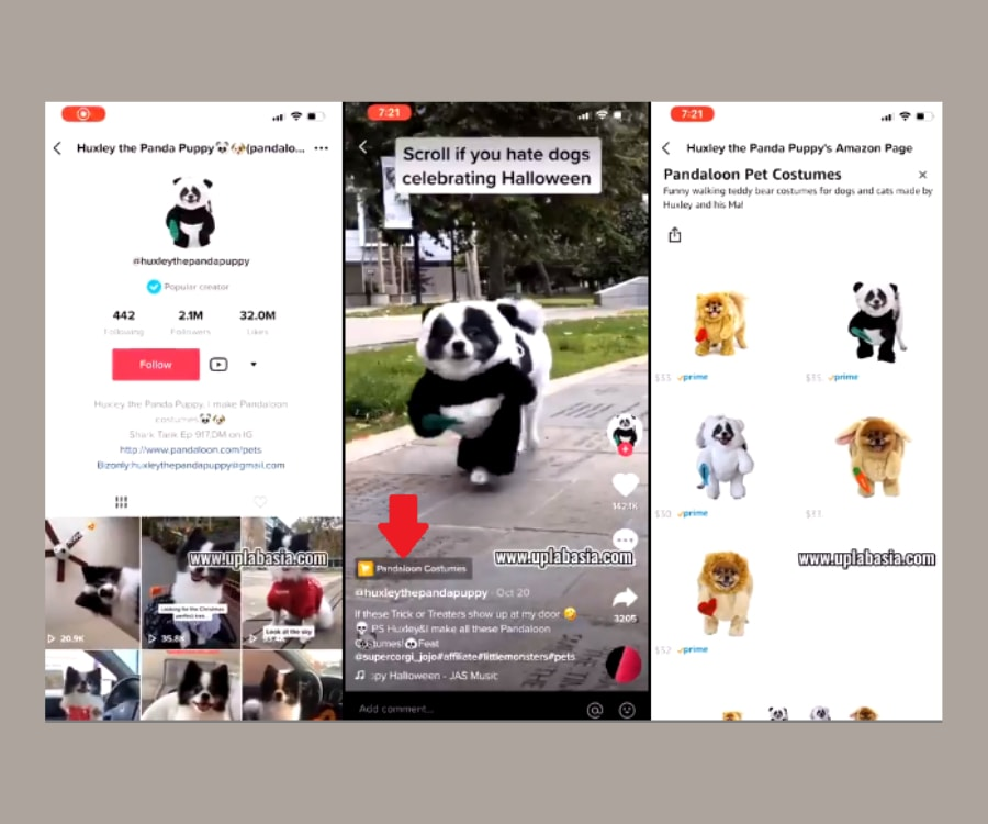 Tiktok social commerce example